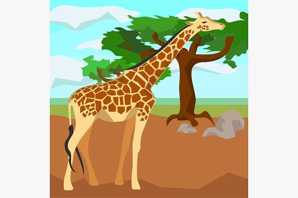Giraffe on background trees