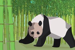 Panda in a bamboo grove