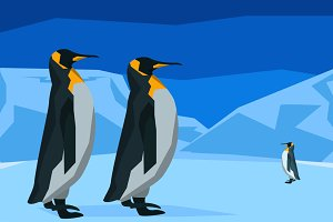 Penguins at the South Pole