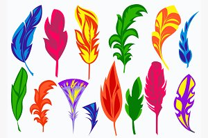 Set isolated colored feathers