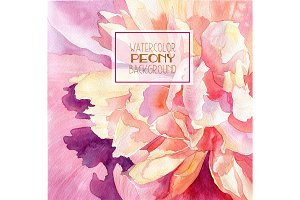 Watercolor peony background
