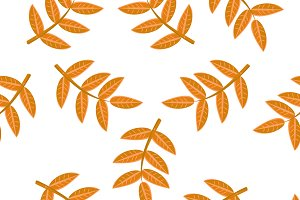Seamless pattern with leaf,