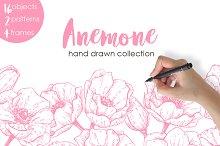 Anemone. Hand Drawn Flower Set