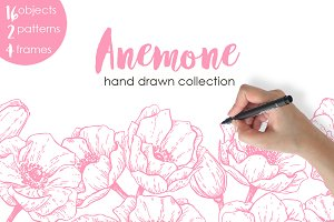 Anemone. Hand Drawn Flower Set