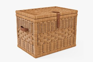 Wicker Storage Trunk 05 Toasted Oat