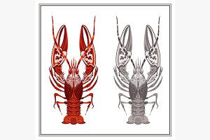 Isolated ornament crayfish
