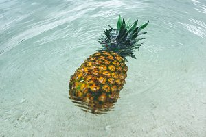 Pineapple at Beach in Mexico 10