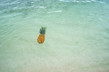 Pineapple at Beach in Mexico 11