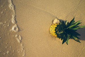 Pineapple at Beach in Mexico 15