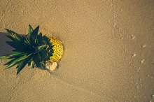 Pineapple at Beach in Mexico 16