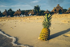 Pineapple at Beach in Mexico 19