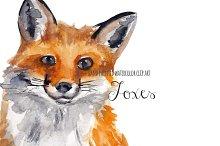 Fox watercolor clipart