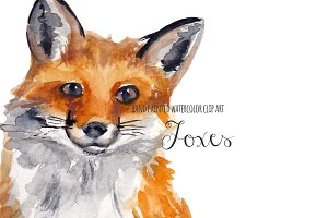 Fox watercolor clipart