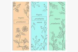 Floral, flowering decorative flyer