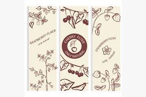 Decorative, berry, botanical card