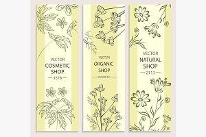 Floral, decorative, botanical banner