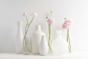 Ranunculus Stems in Vases