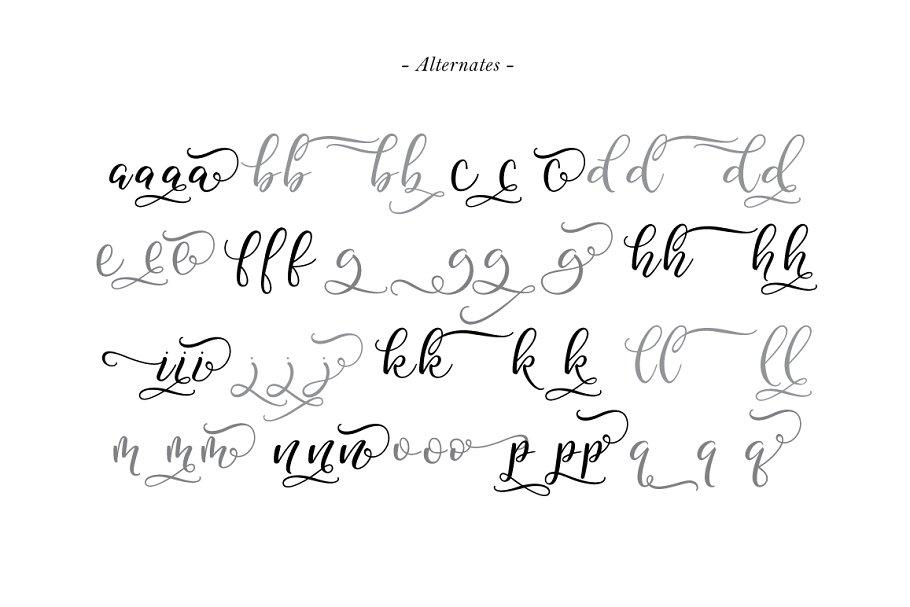 Best Legacy Typeface Vector