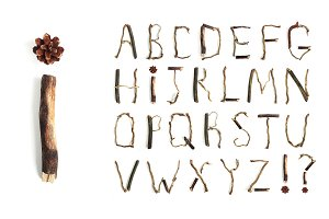 Alphabet made from branches