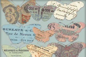 European Ephemera Butterfly Images
