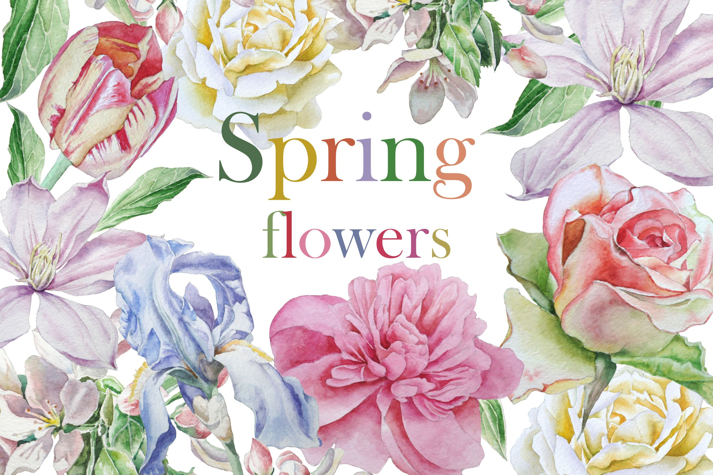 Spring flowers watercolor objects creative market for Spring flowers watercolor