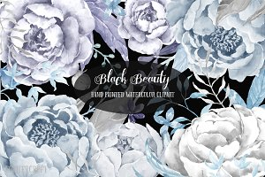 Watercolor Clipart Black Beauty