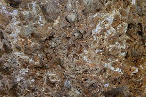 Porous Rock Background Closeup
