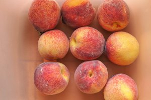 Many peach fruits
