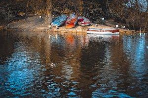 Boats moored on boating lake, London