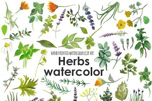 Herbs watercolor clip art