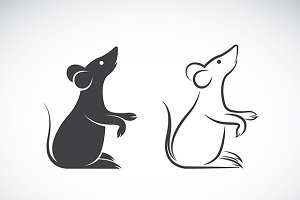 Vector image of an rat design