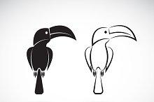 Vector image of an toucan