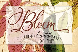 Bloem Script & Sans
