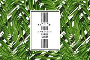 Tropical seamless bundle