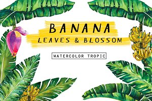 Banana Leaves&Blossom watercolour