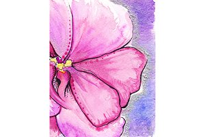 Watercolor pink abstract flower