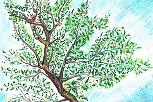 Watercolor tree on sky background