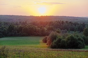 Vivid summer forest between hills scene toned by beautiful sunset in Russia.