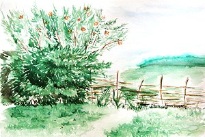 Watercolor countryside landscape