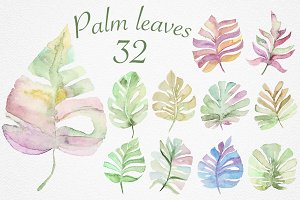 Palm leaves collection