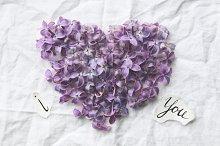 Lilac heart.