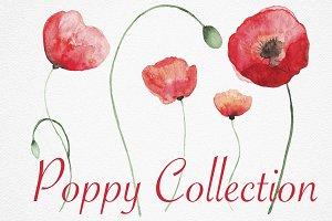 Watercolor Poppy Set