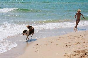 boy and dog on sea
