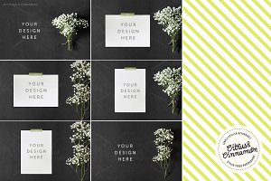 Styled Stock Photography Pack - 04