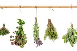 Herbs hanging isolated