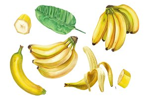 Watercolor banana set