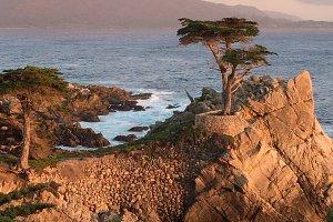 Carmel CA shoreline scenic at sunset
