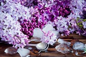 Fresh lilac flower petals