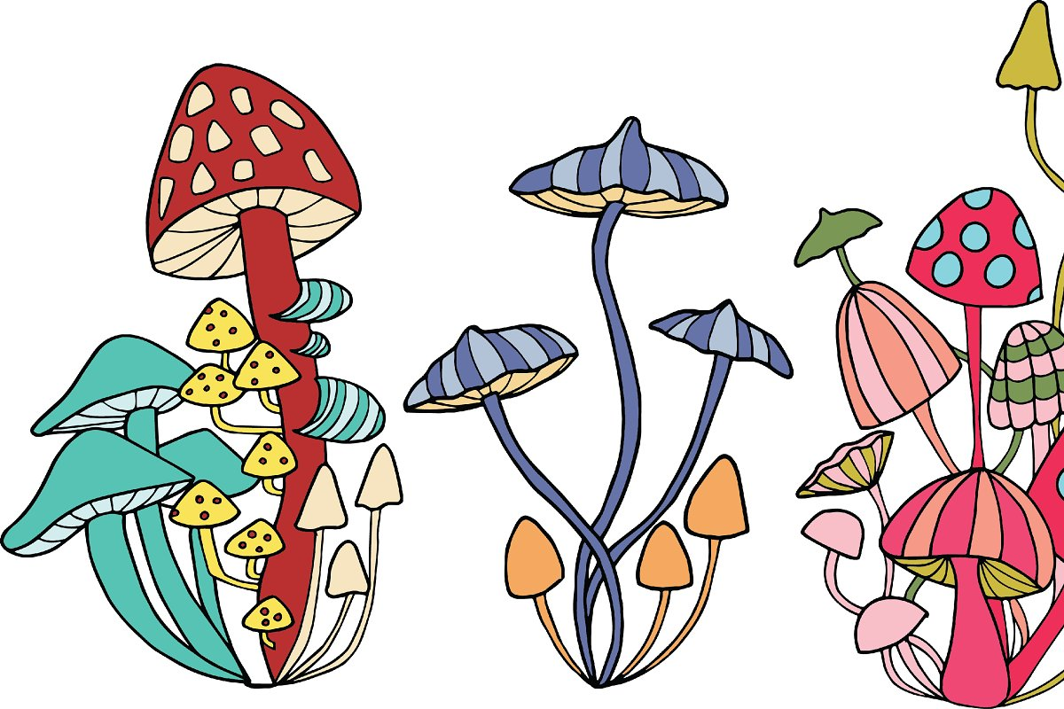 Mushrooms Color And Outline Custom Designed Illustrations