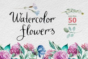 Watercolor different flowers
